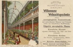 palmenhaus-geschicthe