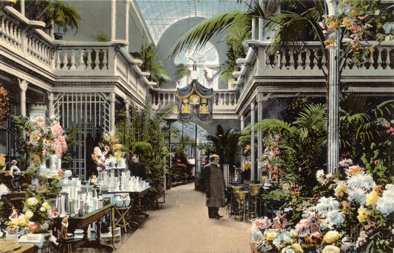 Geschichte des Palmenhauses